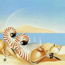 ヘレン・ウィルシャイアー作『Sea Shells』サムネイル
