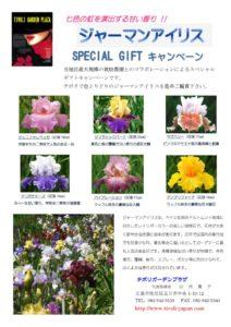 geaman-irisのサムネイル